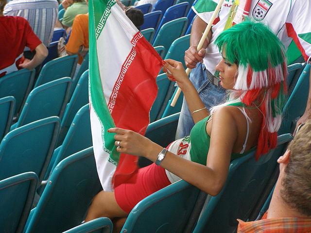 A fan who would have enjoyed the jokes from Iran v Nigeria more than the game