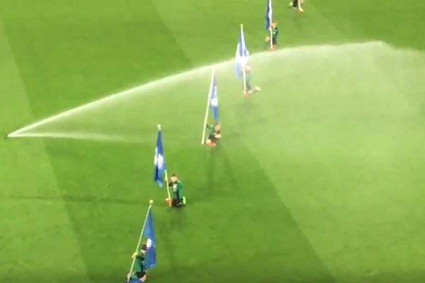 Cardiff mascots soaked by the sprinklers before Championship clash with Leeds