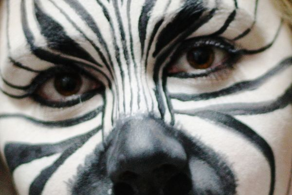 A Liverpool fan had zebra face paint after promising to on Twitter, if Man City lost to Newcastle