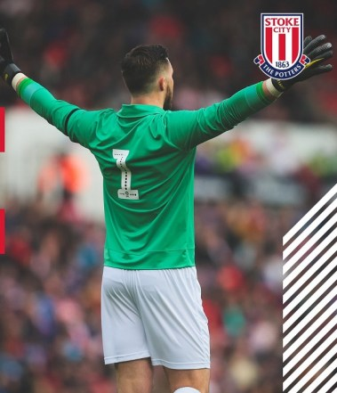 Stoke City 2019 Gordon Banks Macron Tribute Football Kit, Soccer Jersey, Shirt