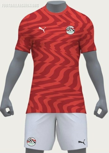 Egypt 2019 Africa Cup of Nations PUMA Home and Away Football Kit, Soccer Jersey, Shirt