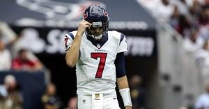 Brian Hoyer - USA Today Sports Photo
