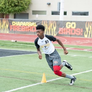 Lacarea Pleasant-Johnson 2019 WR