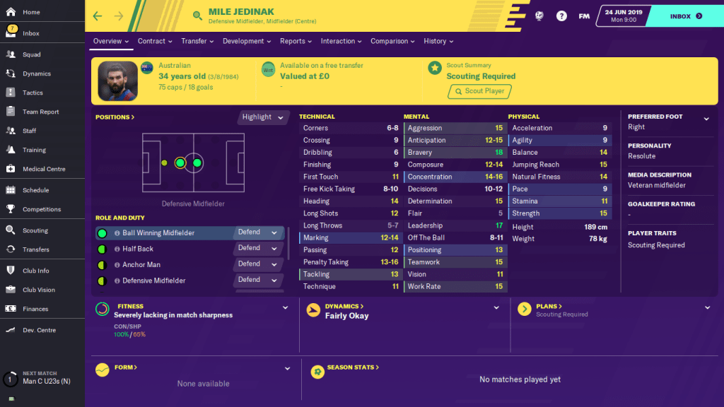 Jedinak stats football manager