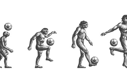 Homo passiens – Man the footballer, the missing link in evolution?