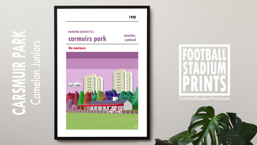 A Camelon Juniors print hanging on the wall