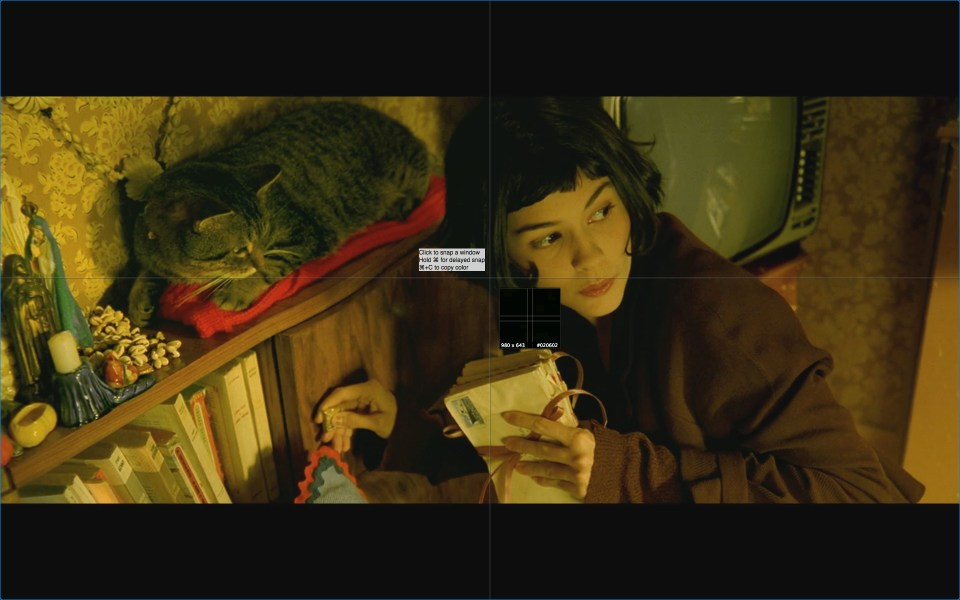 amelie screenshot207