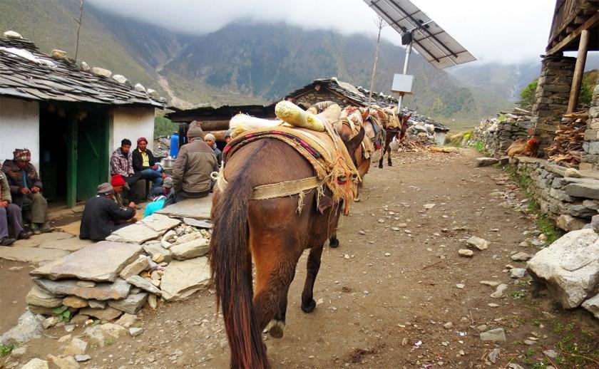 panchachuli-trek