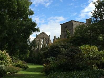 Holyrood Garden