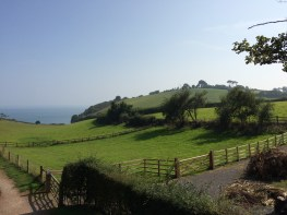 Fields near Dawlish