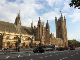 Palace of Westminster: The Houses of Parliament