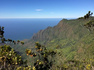 Kalalau Valley of Nā Pali Coast viewed from Pihea Trail