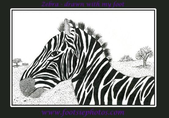 Zebra drawn with my foot.