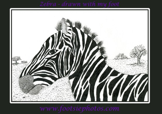 Zebra drawn with my foot.