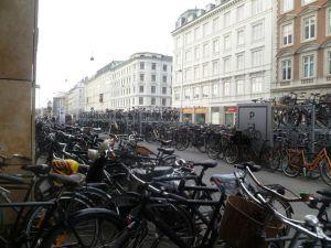 The hordes of bikes by Torvehallerne food markets.!
