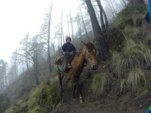 Locals taking the 'easy' way down through the clouds..