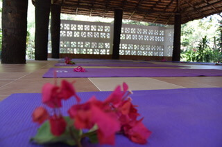 Footsteps Yoga