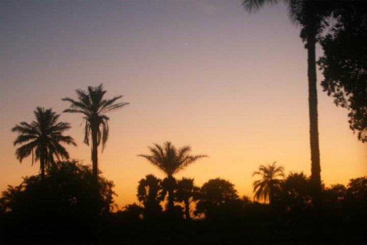 Gambia photography   sunrise wetlands   Gambian sun