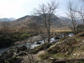 Rowan at River Pean