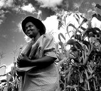 agricultura_africa