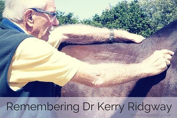Remembering Dr Kerry Ridgway