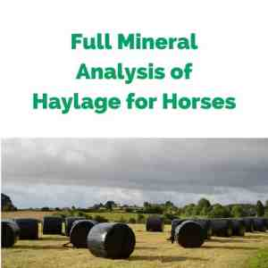 Forageplus-Full-Mineral-Analysis-of-Haylage-for-Horses.jpg