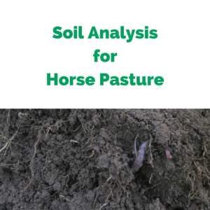 Soil-Analysis-for-Horse-Pasture.jpg