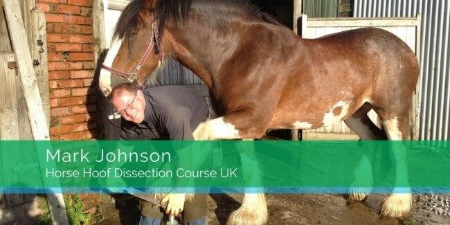 Mark-Johnson-Hoof-Dissection-Course-UK-1-1024×512