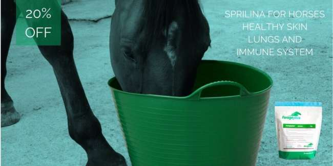 Spirulina 20% discount for horses coupon code