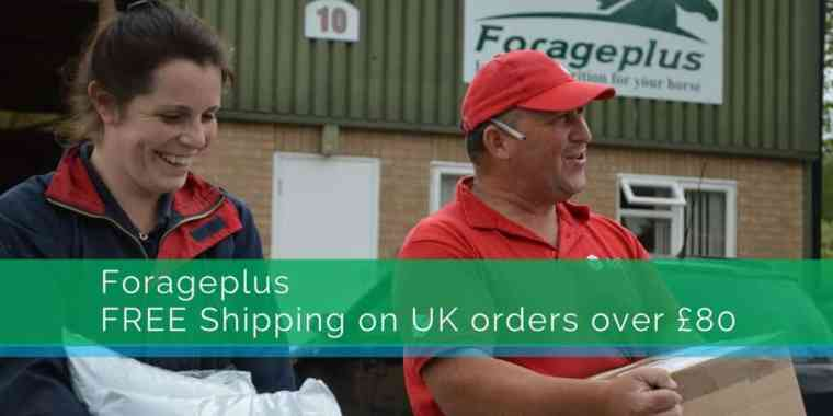 Forageplus Free Shipping Horse Feed