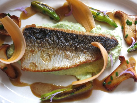 cisco with chanterelles, endamame puree, daylillies, and soy vinegar sauce recipe