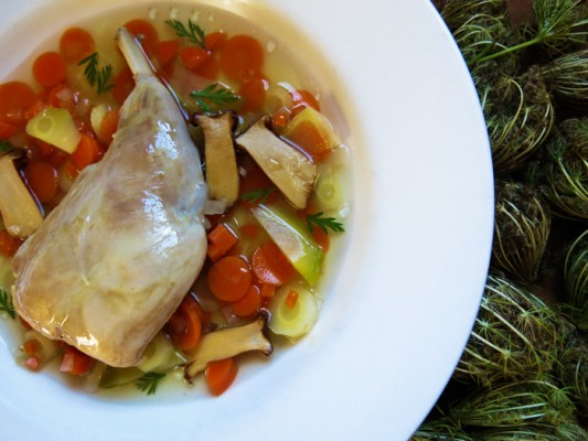 rabbit poached in wild carrot broth