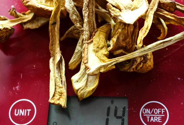Dried bolete or russula soy sauce_-3