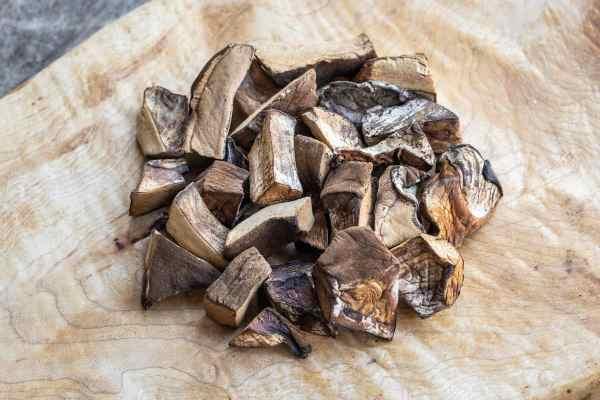 Dried Ischnoderma resinosum, or resinous polypore
