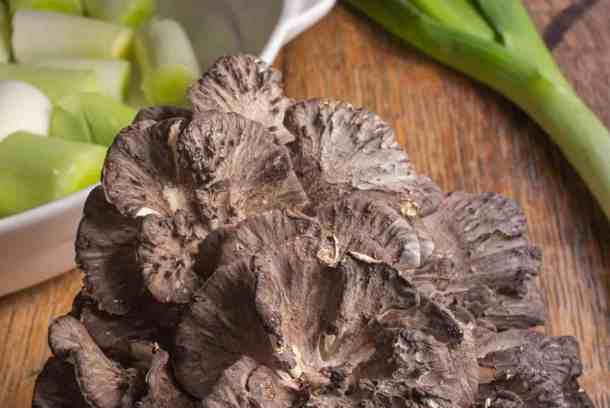 hen of the woods gratin recipe, maitake mushroom gratin recipe