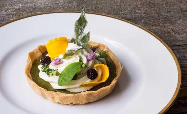 Knotweed-custard tart