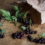 Chokeberries, or edible Aronia melanocarpa
