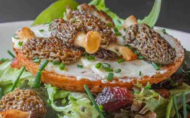 french morel mushroom salad