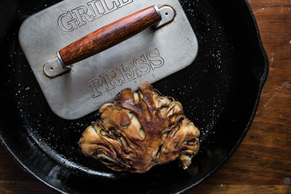 Hen of the woods mushrooms or maitake cooked under a brick