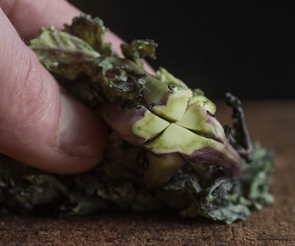 Kale Sprout with the stem scored_-2