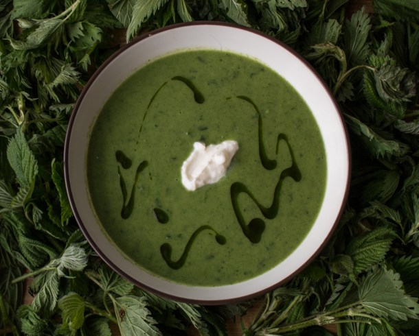 The best stinging nettle soup