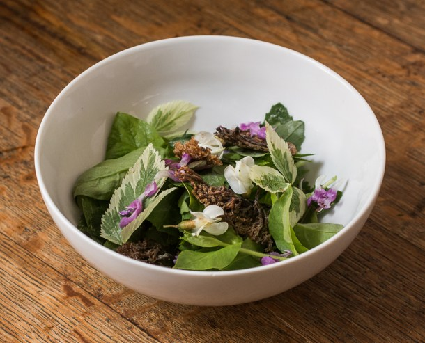 Foraged Green Salad with Crown Coral Mushroom Croutons