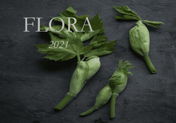 Flora Book, Sample Cover