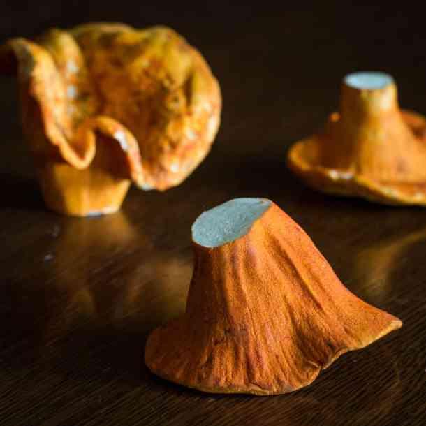 Lobster Mushrooms Hypomyces lactiflourum
