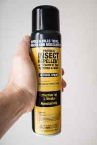 Permethrin spray to kill ticks with lymes disease