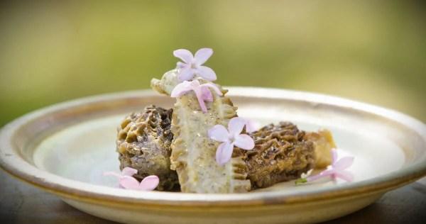 Morel mushrooms stuffed with morel cream sauce