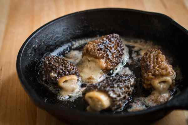 Morels stuffed with dried morel mushroom sauce
