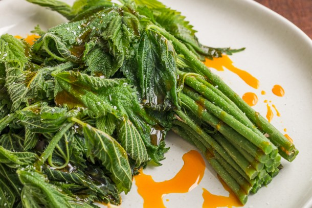 Steamed wood nettle shoots with acorn oil recipe