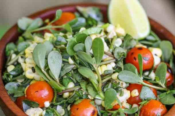 Foraged purslane, sweet corn and tomato salad recipe