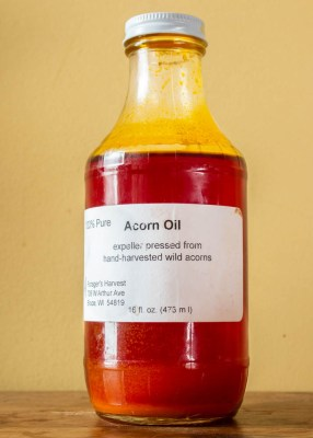 Wild harvested water oak acorn oil from Foragers Harvest